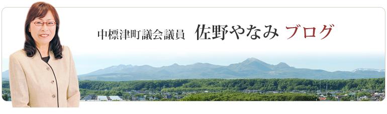 佐野やなみ日記(ブログ)